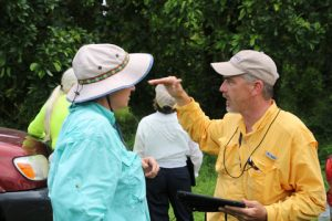 tree and landscape appraisals