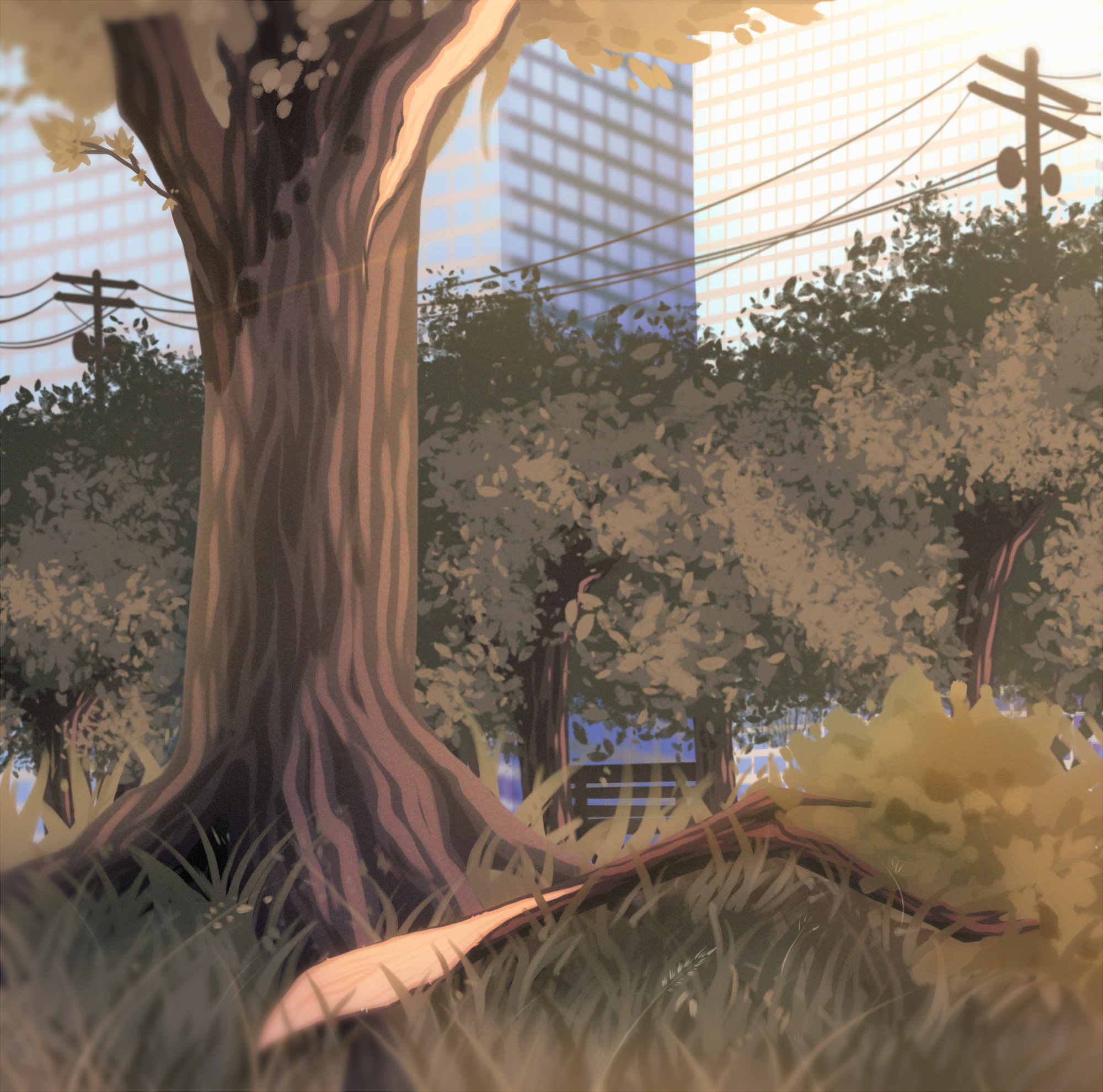 Dead trees do talk